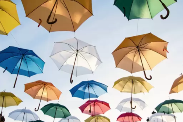 What your umbrella fund offers you  under the default regulations